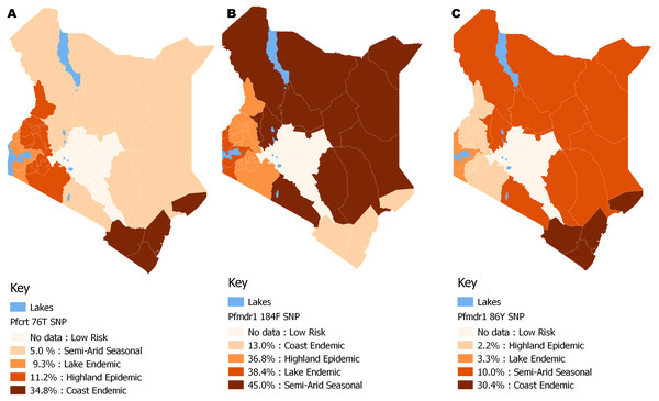 Spatial distribution patterns of (A) Pfcrt 76T, (B) Pfmdr1 184F and (C) Pfmdr1 86Y SNPs by malaria epidemic zones using QGIS version 2.18.