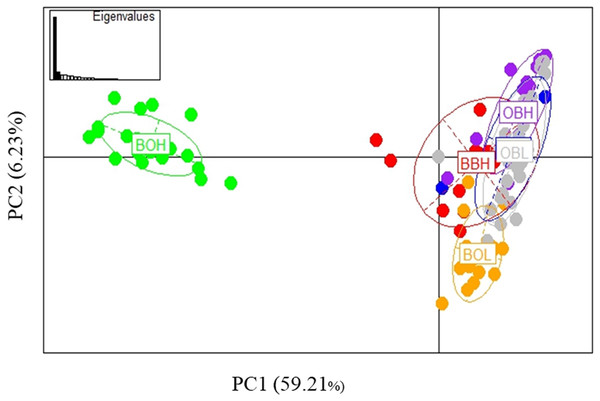 PCA based on 27 outlier loci.