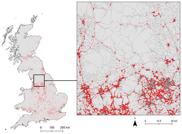 Binary output of logistic habitat suitability indices (HSI) for E. europaeus roadkill using all road data.