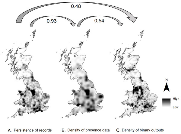 Map representing the correlation between the roadkill presence data and HSM model predictions.