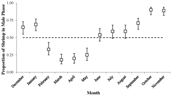 The proportion of shrimp in male phase (±1 SE) for each monthly sample.