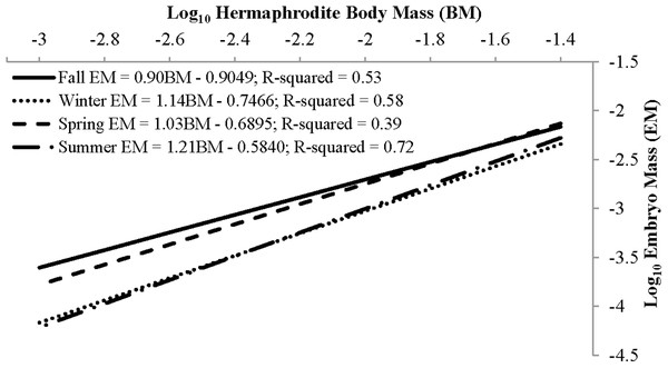 Seasonal reproductive output as the linear relationship (after log–log data transformation) between embryo mass and dry hermaphrodite body mass.