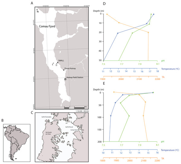 Sampling locations in the Comau Fjord, Chilean Patagonia and depth profiles of water column properties.