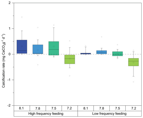 Box-and-whisker plots of skeletal growth rates of D. dianthus specimens during the whole experiment (433 days of incubation) at the four pH levels and two frequency feeding treatments.