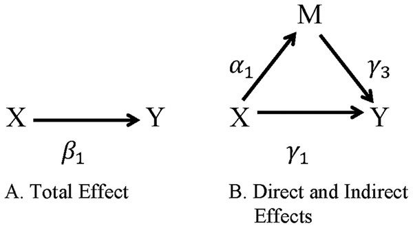 Direct and indirect effects of X on Y through M.