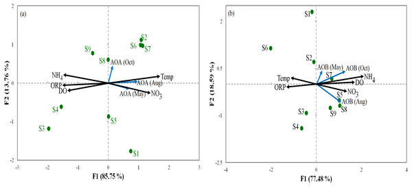 Redundancy analysis ordination plots of correlations between the communities of AOA (A) and AOB (B) and environmental factors from the sediment samples at the nine sites.