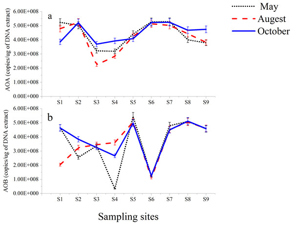 Abundance of AOA (A) and AOB (B) gene copies in sediments from Luotian River sampling sites.
