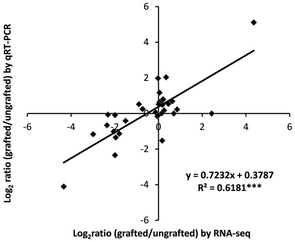 Correlation analysis of qRT-PCR and RNA-Seq data.