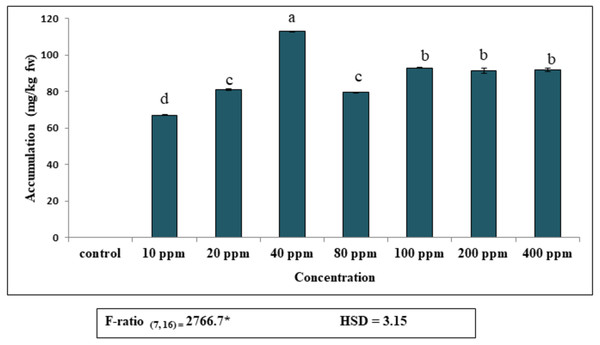 Accumulation of diethyl phthalate (DEP) by S. polyrhiza. Results are presented as Mean ± SE, n=3, one-way ANOVA, Tukey's HSD. *Significant at p≤0.05. Control showed no DEP detection.