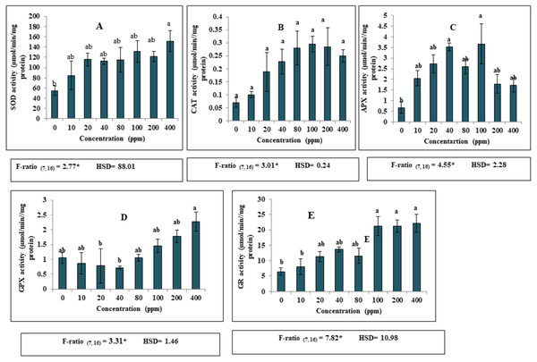 Effect of DEP stress on antioxidant enzymatic activities of S. polyrhiza. Results are presented as Mean ± SE, n=3, one-way ANOVA, Tukey's HSD. *Significant at ≤0.05.