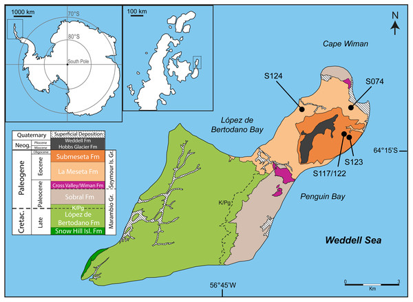 Map and geology of Seymour Island, James Ross Basin, Antarctic Peninsula, showing the localities where new material was recovered.