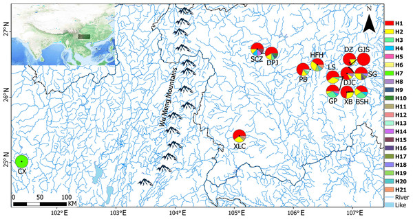 Sampling locations and geographical distributions of haplotypes.