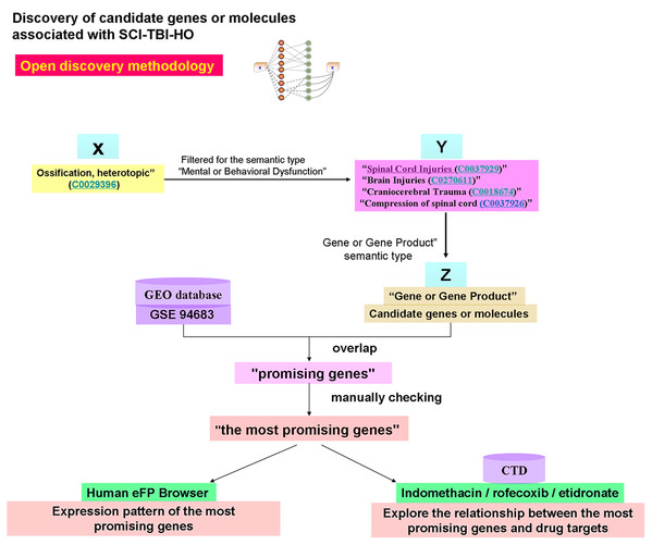 Discovery of candidate genes or molecules associated with SCI-TBI-HO by Open discovery methodology.