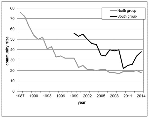 Yearly maximal community size during the study period for North group (grey line) from 1987 until 2014 and for South group (black line) from 1999 until 2014.