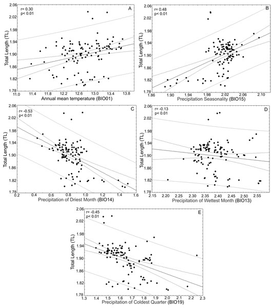 Correlations between total leaf length and bioclimatic variables.