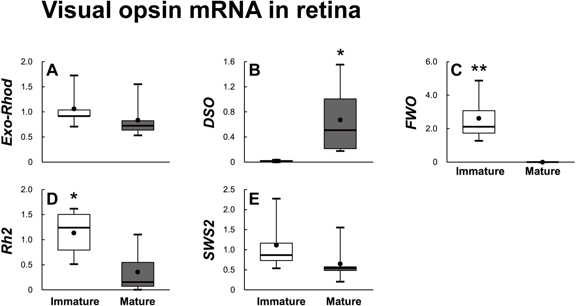 Gene Expression Patterns Of Novel Visual And Non Visual Opsin
