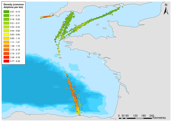 Density of common dolphins (per km 2) across the study area.