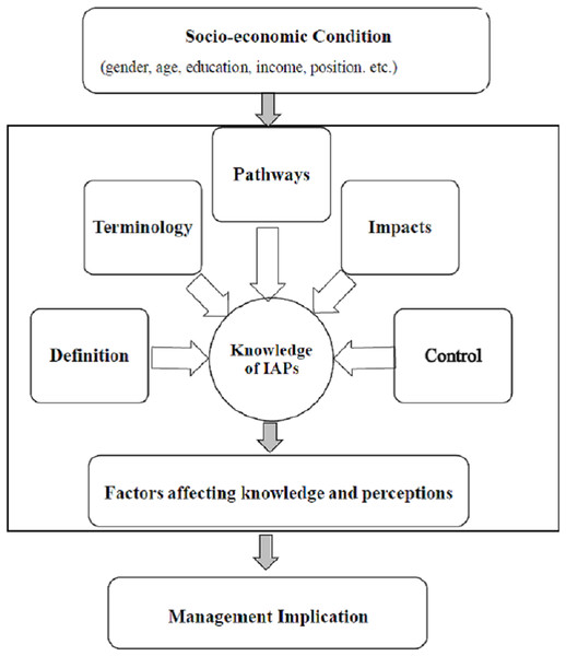 A conceptual framework of individuals' knowledge and perceptions of IAPs.