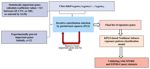 Flowchart of the integrated identification method for signature genes.