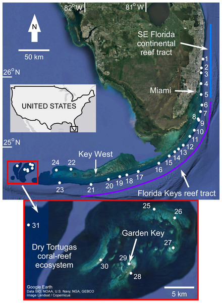 Map of coral sample locations from south Florida.