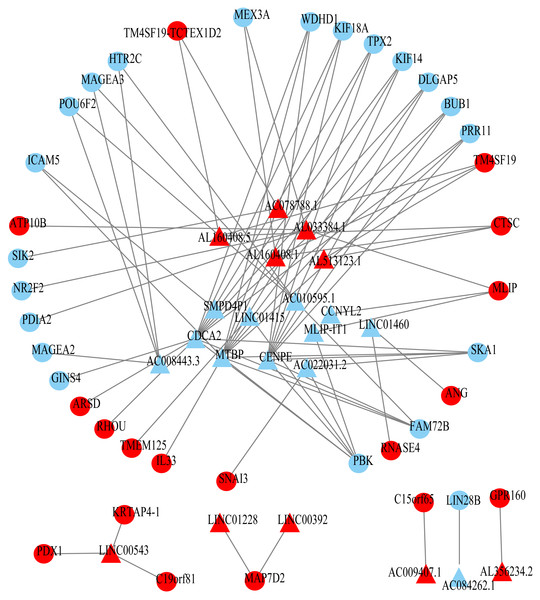 Prognosis-related co-expression RNA network in ESCC.