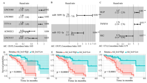 Forest plots of hazard ratios (HR) of the RNAs and Kaplan-Meier curves for overall survival (OS) of high-risk and low-risk patients based on prognostic scores in the TCGA ESCC cohort.