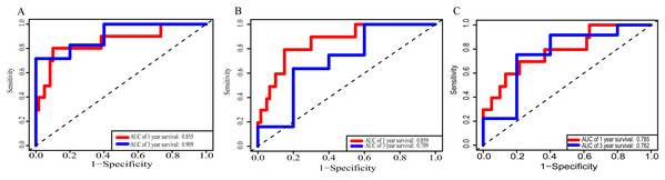 Receiver operating characteristic curves for survival prediction by prognostic score in TCGA ESCC cohort.
