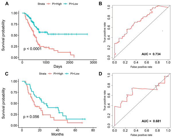 The survival prediction performance of the prognostic index.