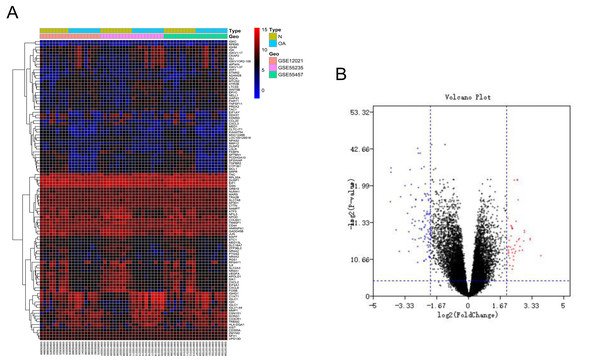 Differentially expressed gene expression heatmap and volcano plot between osteoarthritis and normal controls.
