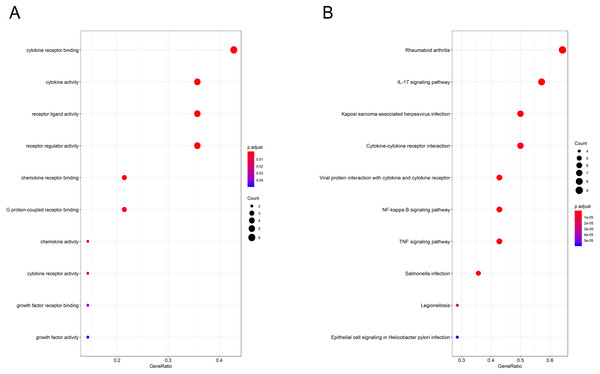 GO and pathway analysis results of hub genes between osteoarthritis and normal controls.