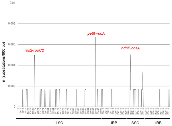 DNA polymorphism analysis of the plastid genome sequences of Brunellia antioquensis and B. trianae.