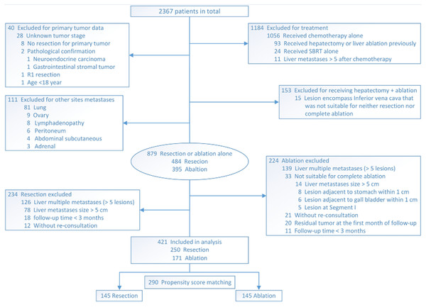Flowchart of selection of patients who underwent resection or ablation.