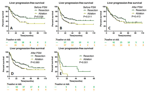 LPFS stratified by the size of liver metastases between the resection and ablation groups.