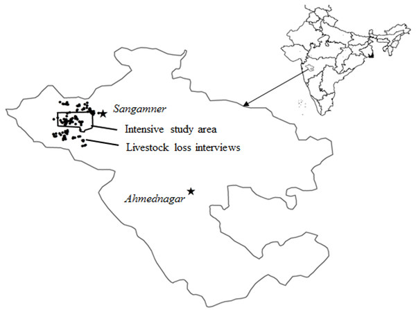 The Ahmednagar district is shown with the study area marked as a polygon where information on livestock losses was collected from households chosen randomly.