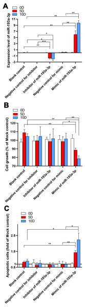 Results of in vitro experiments of miR-193a-3p in HCC.