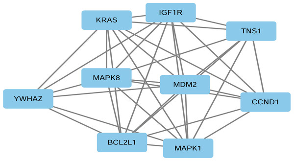 PPI network of nine representative target genes of miR-193a-3p in HCC.
