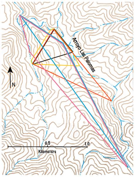 Minimum convex polygons of ocelot LP1-male (black), LP2-female (yellow), LP3-gender unknown (orange), LP6-male and LP8-female (blue), and LP7-male (pink) in the Arroyo Las Palomas area.