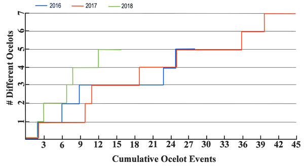Ocelot accumulation charts for 2016–2018.