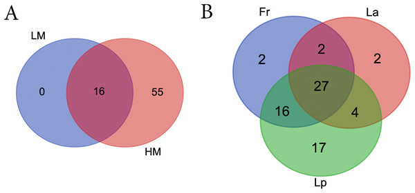 Venn diagrams showing the number of shared bacterial genera between different climate (A) and among different turf species (B).