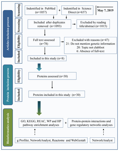Inclusion criteria for abnormal protein candidates and the process of bioinformatics analysis.