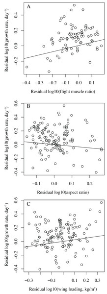 Bivariate plots showing the relationships between growth rate and wing parameters in birds.