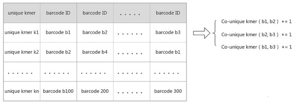 Create a hash mapping from unique k-mer to barcode.