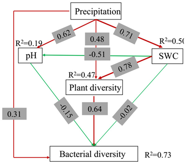 Structural equation model (SEM) of the effects of the precipitation on the bacterial diversity in the top soil (0–10 cm) soil depth.