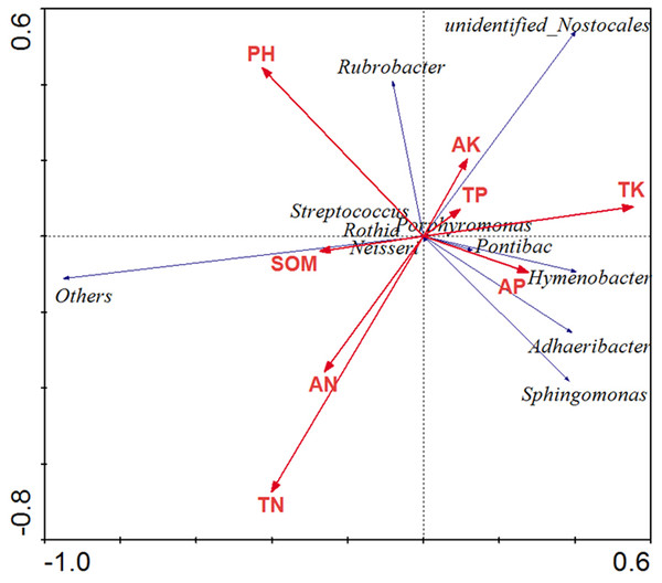 Redundancy analysis to explore relationship between microorganism community (genus) and physiochemical characteristic.