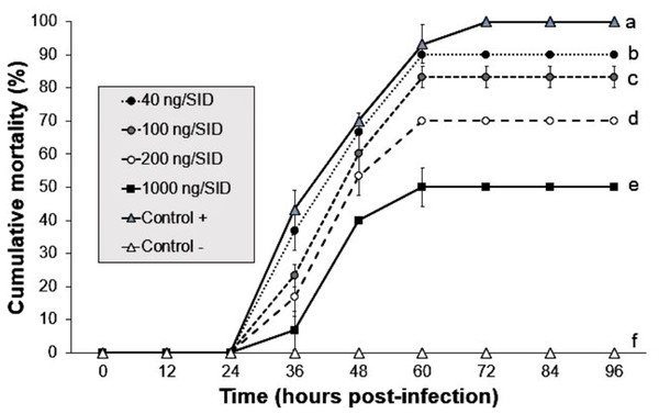 Effect of mixture Argovit-4/WSSV of different doses injected by intramuscular route.
