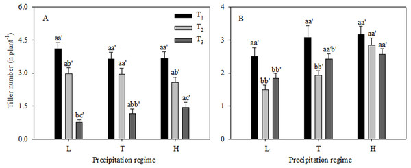 Vegetative tiller number (A) and reproductive tiller number (B) (mean ± 1 s.e.) of C. virgata under different precipitation regimes at different seedling emergence times.