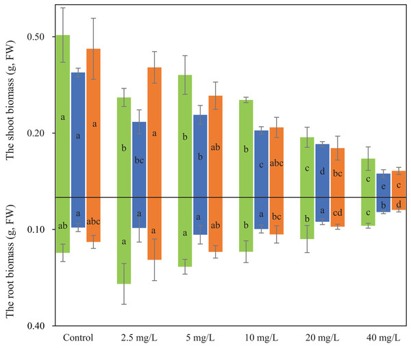 The biomasses of shoot and root for three wheat cultivars under different Cd treatments.