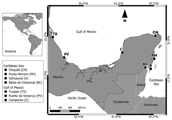 Geographic location of the seven sampling sites.