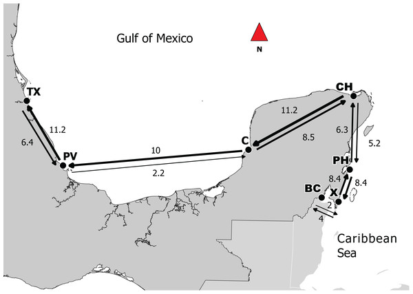 Directionality of migration in the Caribbean and the Gulf of Mexico between adjacent sites.