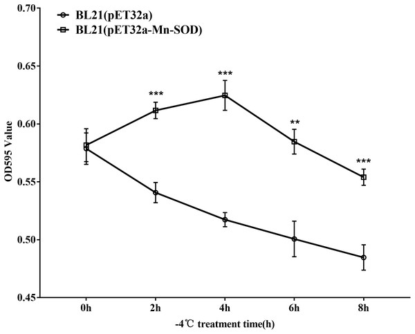 Survival curve of the MpmMn-SOD overexpressed BL21 (pET32a-mMn-SOD) at −4 °C cold stress.